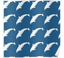 Atlantic Dolphins. Poster