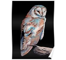 Watercolor and Ink Owl Poster