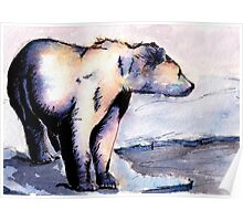 Watercolor and Ink Polar Bear Poster