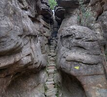 Silent Street, Pinnacle Walk, Grampians, Victoria by Adrian Paul