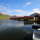 Iceland XXIII by Debbie Ashe