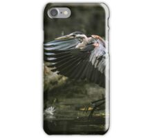 Coming In For A Landing iPhone Case/Skin