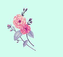 Rose, Soft Peach on Mint by ThistleandFox