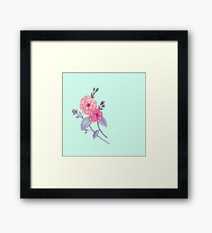 Rose, Soft Peach on Mint Framed Print