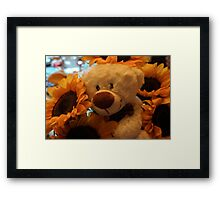 Teddy's Dreams Framed Print