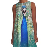 Peacock Splendor A-Line Dress