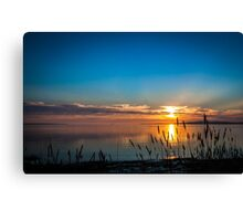 Sunset Reeds, North Shore Port Lincoln - South Australia Canvas Print