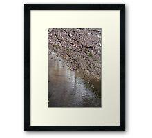 Ten thousand petals Framed Print
