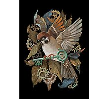 Clockwork Sparrow Photographic Print