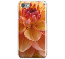 Dazzling Dahlias iPhone Case/Skin