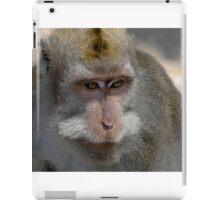 Monkey Forest Ubud  iPad Case/Skin