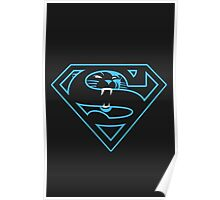 Carolina Panthers Poster
