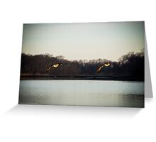 Branta Canadensis - Canada Geese | Orient, New York Greeting Card