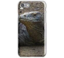 Dragon pose  iPhone Case/Skin