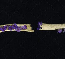 Purple Flowers #1 by merrywrath