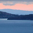 Dusk Cruise on the San Francisco Bay by David Denny