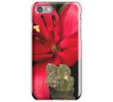 Lily of the Orient iPhone Case/Skin