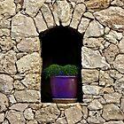 Arch by Chelsea McCann