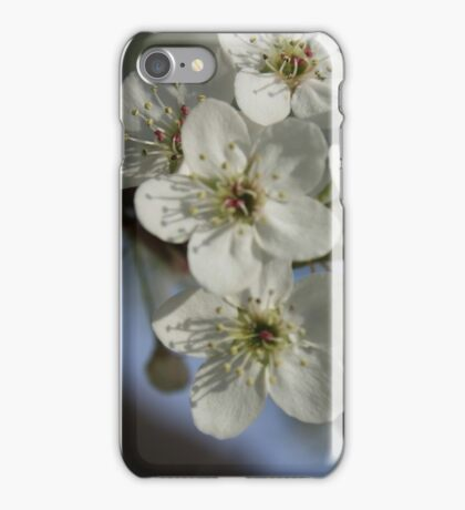 White Flower Blossoms iPhone Case/Skin