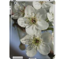 White Flower Blossoms iPad Case/Skin