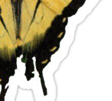 Tiger Swallowtail Butterfly - Pop Art style halftone Sticker