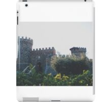 wine country iPad Case/Skin