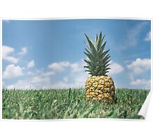 Pineapple on Hill Poster