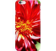 Purple Flower close up iPhone Case/Skin