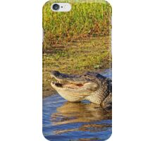 Toothy Grin  iPhone Case/Skin