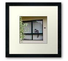 neighbourhood watch is for pussies Framed Print