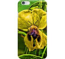 Bumblebee Booty iPhone Case/Skin