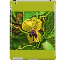 Bumblebee Booty iPad Case/Skin