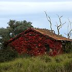 Red cottage (HDR) by Adam Le Good