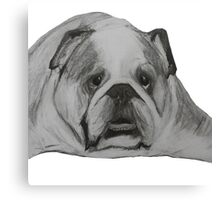 British Bulldog Illustration  Canvas Print