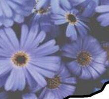 Connecticut Flowers Sticker