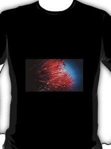 Pohutakawa T-Shirt