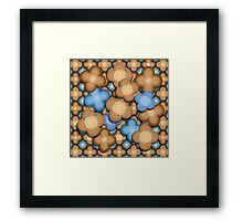 Brown and Blue Flowers Framed Print