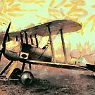 WWI Royal Aircraft Factory S.E.2 1913 by Dennis Melling