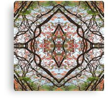 Poinciana  Canvas Print