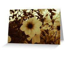 Blooms of Summers Past Greeting Card