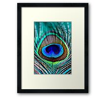 Peacock Feather Framed Print