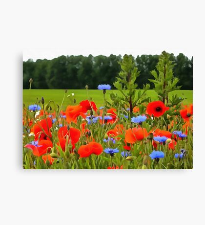 Poppies And Cornflowers Canvas Print