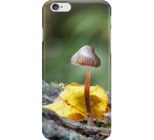 Toadstool in Woodland Setting iPhone Case/Skin