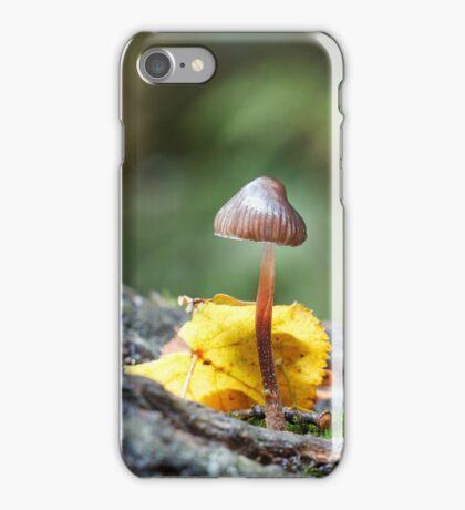 Toadstool in Woodland Setting iPhone Case/Skin