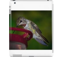 Anna's Hummingbird iPad Case/Skin