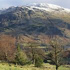 Ullswater In Winter by Francis Drake