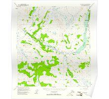 USGS TOPO Map Alaska AK Gulkana D-4 355830 1950 63360 Poster
