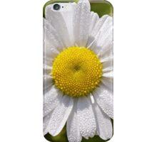 Daisy  iPhone Case/Skin
