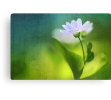 Above all, infinity...  Canvas Print
