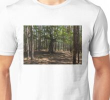 Surrounded - an Ancient Beech Tree in a Pine Forest Unisex T-Shirt